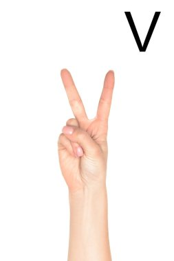 Partial view of female hand showing latin letter - V, deaf and dumb language, isolated on white stock vector