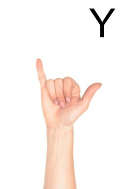 Partial view of female hand showing latin letter - Y, deaf and dumb language, isolated on white stock vector