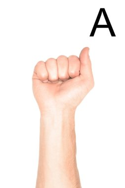 Cropped view of male hand showing latin letter - A, deaf and dumb language, isolated on white stock vector