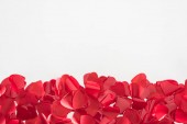 Photo close-up view of beautiful red heart shaped petals on grey background, valentines day concept