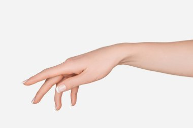 Cropped view of female hand isolated on white stock vector