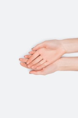 Top view of female hands isolated on white with copy space stock vector
