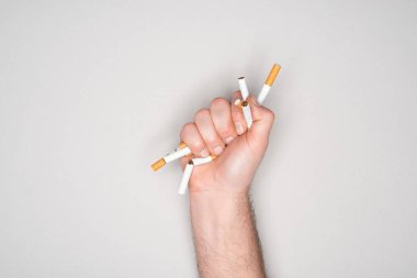 Partial view of man breaking cigarettes in hand isolated on grey, stop smoking concept