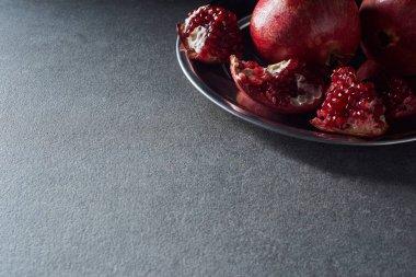 Studio shot of ripe cut garnets on plate stock vector