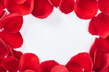 top view of round floral frame made with red rose petals isolated on white with copy space
