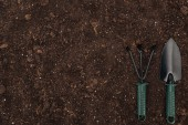 top view of shovel and rake on ground, protecting nature concept