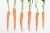 top view of fresh ripe raw whole carrots arranged in row isolated on white