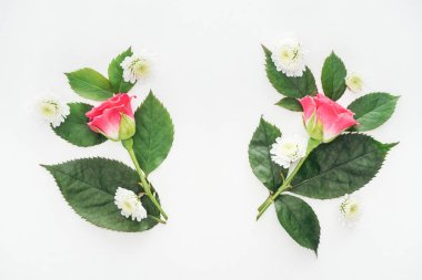 top view of symmetric boutonnieres isolated on white