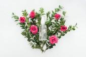 felülnézet üres spray palack a virágok összetétele, a fehér háttér