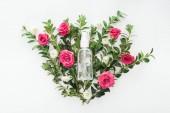 Draufsicht auf die Blumenkomposition mit rosa Rosen, grünem Buchsbaum und leerer Sprühflasche auf weißem Hintergrund