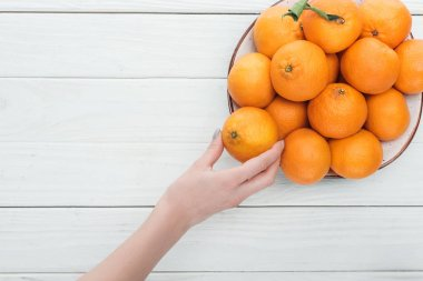 partial view of female hand near plate with tangerines on wooden white background with copy space
