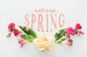pohled shora růží a kosatců složení květy na bílém pozadí s vítáním jara nápisy