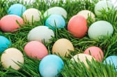 Fotografie close up of colorful easter eggs on green grass