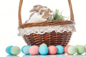 Fotografie colorful easter eggs near wicker basket with bunny and grass on white