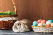 cute rabbit near wicker basket with spring grass and bowl with easter eggs on wooden table