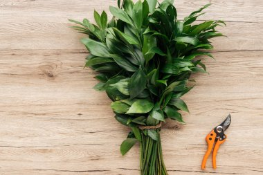 Top view of green bouquet and pruning shears on wooden surface