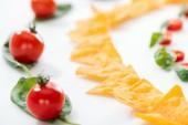 selektivní zaměření chutných nachos a třešňových rajčat s bazalkou na bílém pozadí