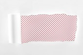 tattered white paper with rolled edge on pink dotted background
