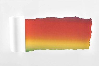 textured white paper with rolled edge on multicolored background