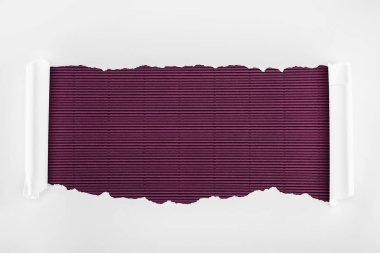 ripped white textured paper with curl edges on purple striped background