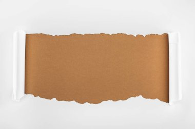 ripped white textured paper with curl edges on brown background