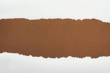 ragged white paper with curl edges on brown background