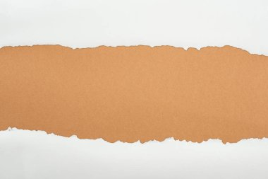 Ripped white textured paper with copy space on brown background stock vector
