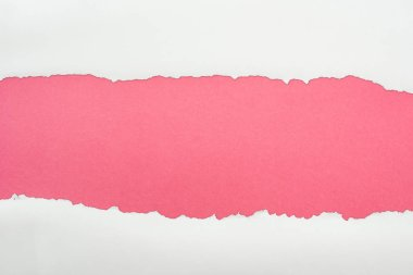 ragged white textured paper with copy space on pink background