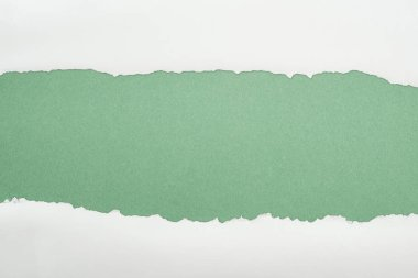 Ragged white textured paper with copy space on green background stock vector