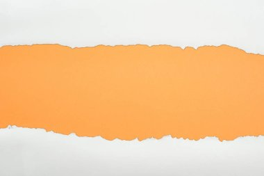 Ragged white textured paper with copy space on orange background stock vector