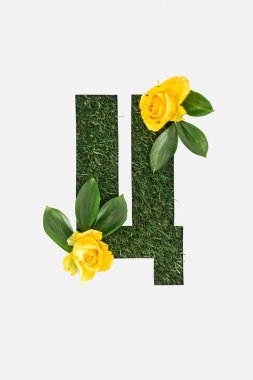 Top view of cyrillic letter made of grass with fresh green leaves and yellow roses isolated on white stock vector