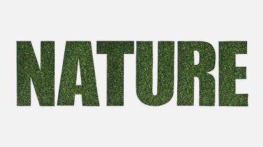 Top view of cut out nature lettering on green grass background isolated on white stock vector