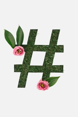 Top view of cut out hashtag sign on green grass background with leaves and pink peonies isolated on white stock vector