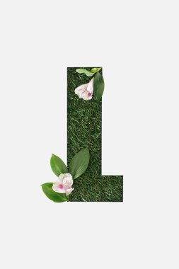 Top view of cut out L letter on green grass background with leaves and alstromeria flowers isolated on white stock vector