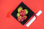 Top view of academic cap with apples and diploma on red surface
