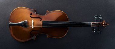 top view of classical cello on black background