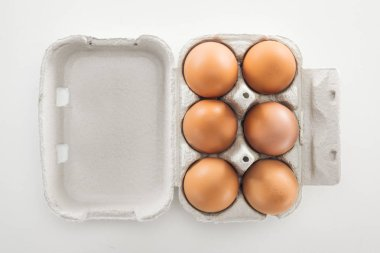 Top view of raw brown chicken eggs in carton box on white background stock vector