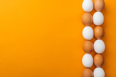 top view of white and brown organic chicken eggs on bright orange background with copy space