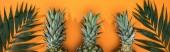 panoramatický záběr ananasu a tropických listů na oranžovém pozadí