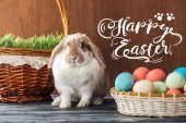 cute bunny near wicker baskets with green grass and colorful chicken eggs with happy Easter lettering on wooden background