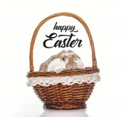 Fotografie cute bunny in wicker basket isolated on white with happy Easter lettering