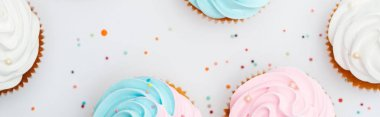 panoramic shot of delicious colorful cupcakes with sprinkles Isolated On White