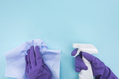 cropped view of cleaner in purple rubber gloves holding rag and spray bottle with detergent on blue background
