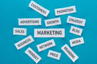 top view of components of marketing on pieces of paper on blue