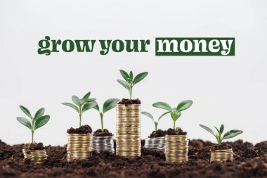 stacks of coins with soil and growing plants near grow your money inscription isolated on white, business concept