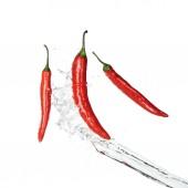 helle würzige rote Chilischoten mit klarem Wasserspritzer isoliert auf weißem
