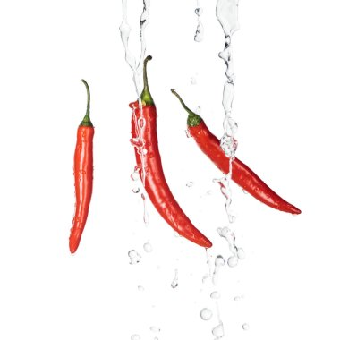 Bright spicy red chili peppers with clear water streams isolated on white stock vector