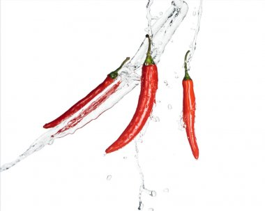 Spicy red chili peppers with clear water isolated on white stock vector