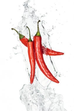 spicy chili peppers with clear water splash and drops isolated on white