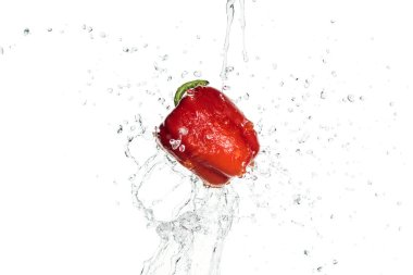 Whole tasty red bell pepper with clear water splash isolated on white stock vector